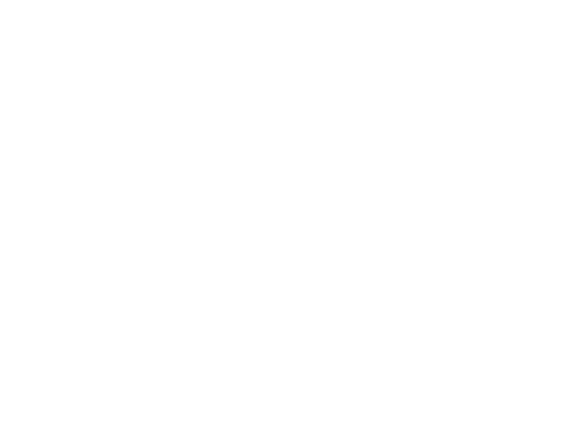 AANDAGT | Logo Ter Braak Willems